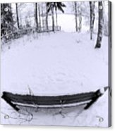 Winter Seat 2 Acrylic Print