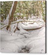 Winter Serenity Acrylic Print