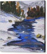 Winter Shades Acrylic Print
