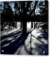 Winter Shadows 2 Acrylic Print