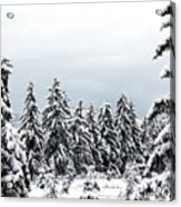 Winter Shangri-la Acrylic Print