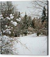 Winter Silence Acrylic Print