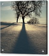 Winter Silhouette Acrylic Print