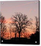 Winter Skies Acrylic Print