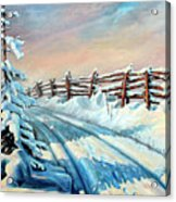 Winter Snow Tracks Acrylic Print