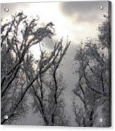 Winter Solstice Utah Acrylic Print