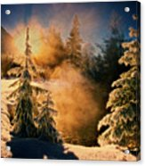 Winter Song Acrylic Print