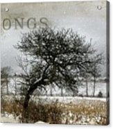 Winter Songs Acrylic Print