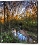 Winter Stream Sunset Acrylic Print