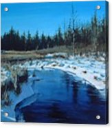 Winter Stream Acrylic Print by William  Brody