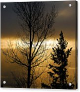 Winter Sunrise 2 Acrylic Print