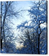 Winter Sunrise II Acrylic Print