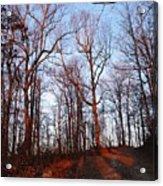Winter Sunset In Georgia Mountains Acrylic Print