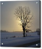 Winter Sunset In Lambton County Acrylic Print