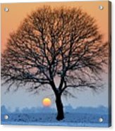 Winter Sunset With Silhouette Of Tree Acrylic Print by Pierre Hanquin Photographie