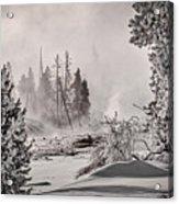 Winter Thermal Steam - Yellowstone Acrylic Print