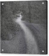 Winter Trail 2016-2 Acrylic Print