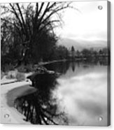 Winter Tree Reflection - Black And White Acrylic Print