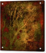 Winter Trees In Gold And Red Acrylic Print
