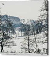 Winter Trees Solitude Landscape Acrylic Print