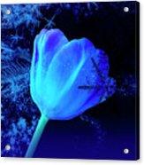 Winter Tulip Blue Theme 2 Acrylic Print