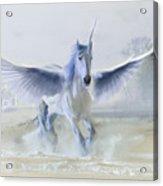 Winter Unicorn Acrylic Print