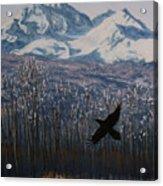 Winter Valley Raven Acrylic Print