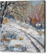Winter I Acrylic Print
