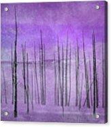 Winter Violet  7913violet Acrylic Print