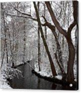 Winter Walk In The Woods Acrylic Print