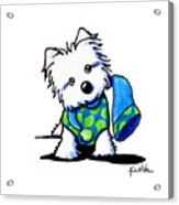 Winter Westie With Lime Acrylic Print