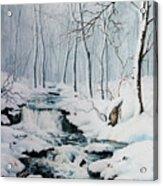Winter Whispers Acrylic Print