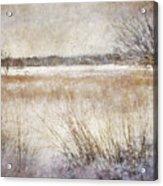 Winter Wonderland II Acrylic Print