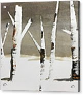 Winter Wood Acrylic Print