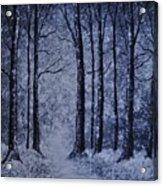 Winter Woods Eve Acrylic Print