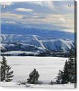 Winterland Acrylic Print