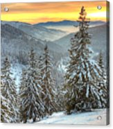 Winterlands Acrylic Print