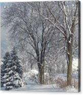 Winter's Best Acrylic Print