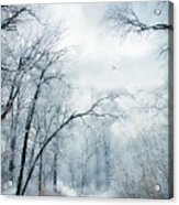 Winter's Cloak Acrylic Print