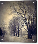 Winter's Dark Thoughts Acrylic Print