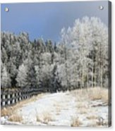 Winters Day In The Mountains Acrylic Print