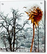 Winters Field Acrylic Print