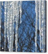 Winter's Icy Fingers Acrylic Print