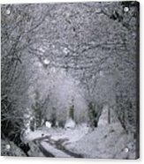 Winters Lane Acrylic Print