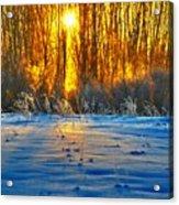 Winters Morning Acrylic Print