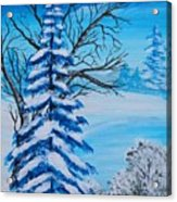 Winters Palette Acrylic Print
