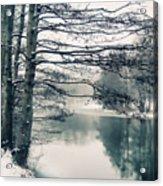 Winter's Reach Acrylic Print
