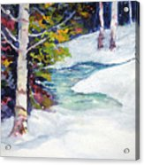 Winter's Solace Acrylic Print