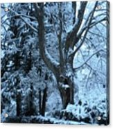 Winter's Touch Acrylic Print