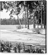 Winter's Tropical Landscape Acrylic Print